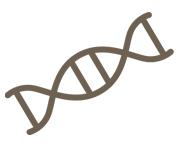 estudios genéticos
